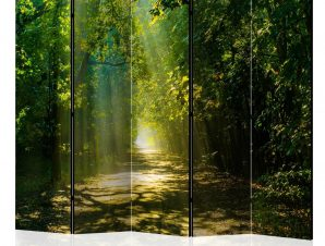 Διαχωριστικό με 5 τμήματα – Road in Sunlight II [Room Dividers] 225×172