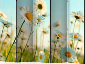 Διαχωριστικό με 5 τμήματα – Daisies – spring meadow III [Room Dividers]