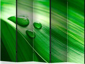 Διαχωριστικό με 5 τμήματα – Leaf and three drops of water II [Room Dividers]